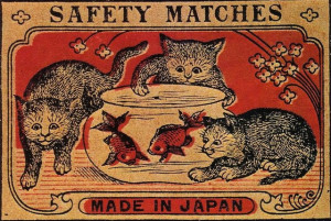safety cats